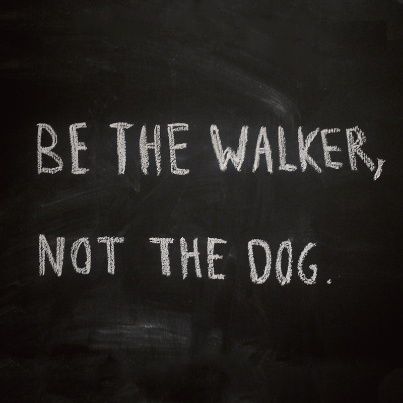 be the walker not the dog