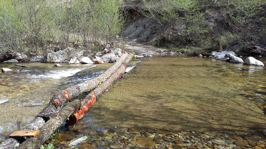 Χρήσιμες οι κορμογέφυρες στα ρυάκια της Τάλιας | Photo (c): Θεοχάρης Λεζπουρίδης