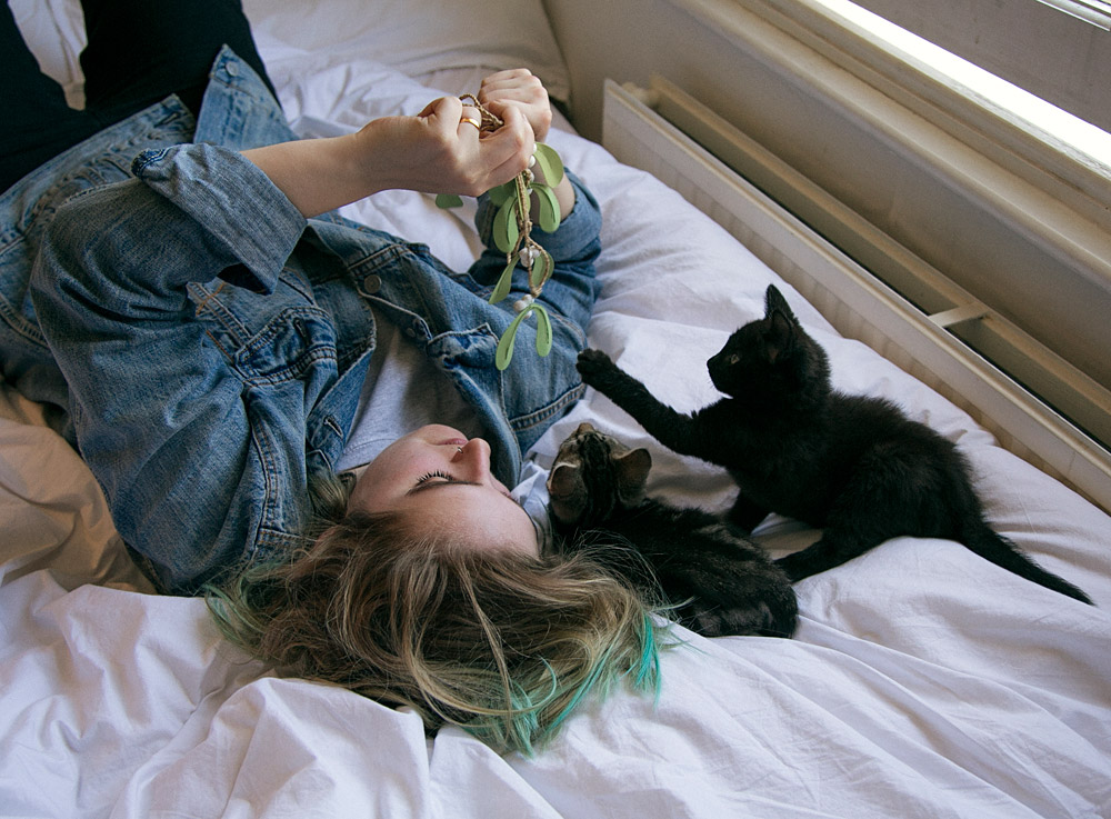 Acts and their Cats: Shura