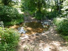 DSCN0724 658 Stream Crossing