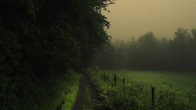 An Eifel Path