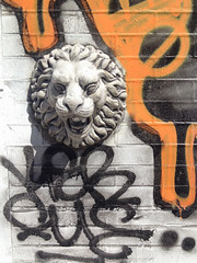 Wall lion