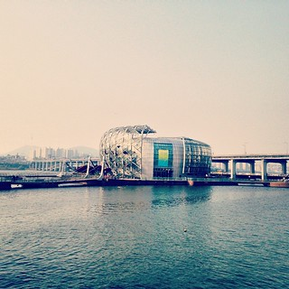 Bild av Floating Island nära Seocho-gu. square nashville squareformat iphoneography instagramapp uploaded:by=instagram foursquare:venue=4bdec6530ee3a5931cc231b0