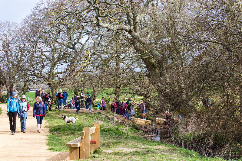 Queue for the stepping stones
