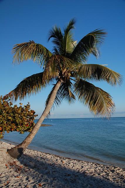 Sombrero Beach 3/2015