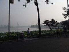 南京 好好的城市 - naniyuutorimannen - 您说什么!