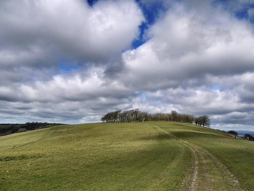Chanctonbury Ring fort