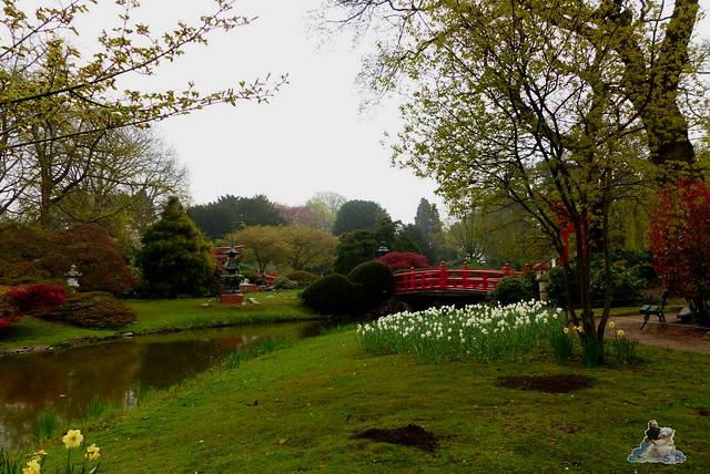 Tierpark Hagenbeck 25.04.2015   2