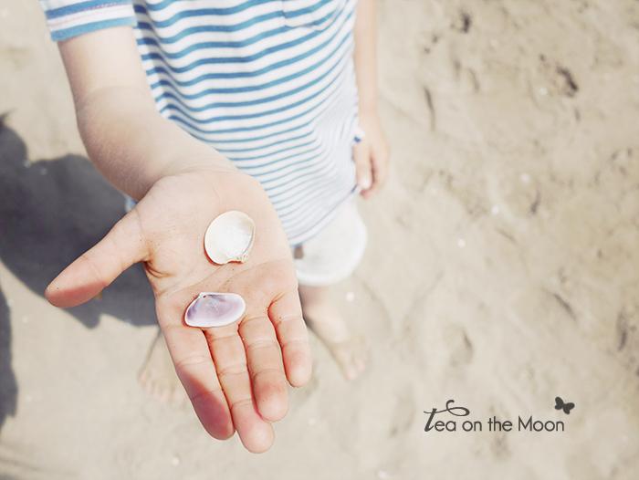 tesoros de playa