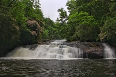 Stairway Falls on the Horsepasture River, lined with blooming Laurel
