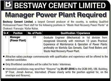 Bestway Cement Limited Manager Power Plant Job