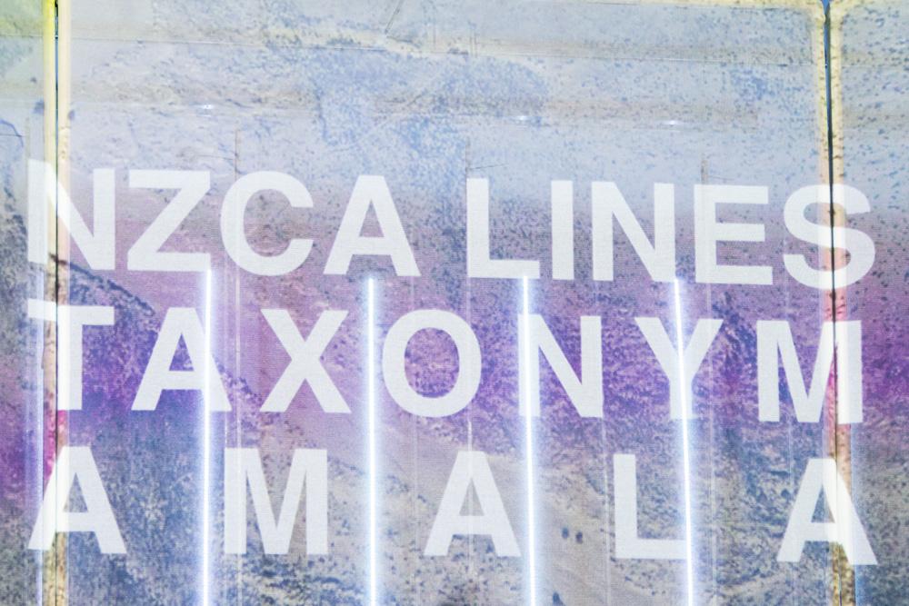 NZCA/Lines - Peckham