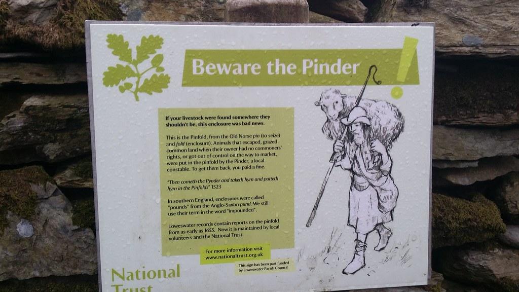 Pinder #sh