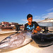 SEMPORNA, MALAYSIA- MARCH 6, 2015 : Unidentified bajau man holding a yellowfin tuna for selling at a area in Semporna, MALAYSIA. The yellowfin tuna is found in pelagic waters of tropical oceans. by shahreen   amri
