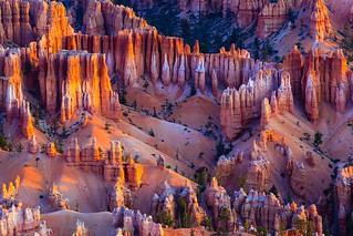 Bryce Canyon Sunrise JE1C7039-cool-website