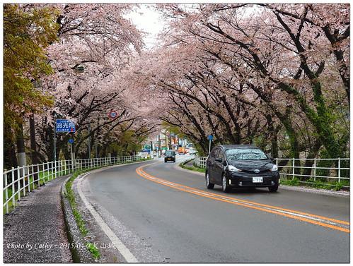 犬山城-76