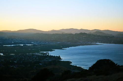 Marin View