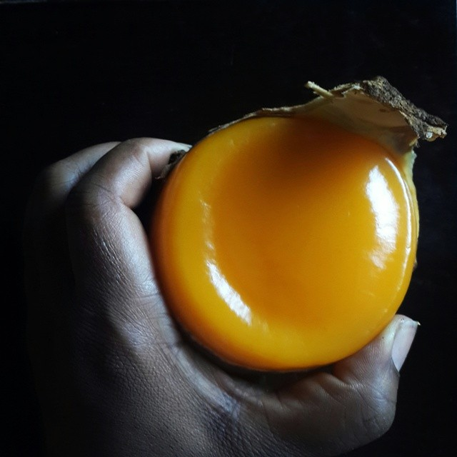 #Epapa - #colalepidota.  This fruit drove me crazy in August,  2011 when I first discovered it.  I didn't know it's name. And this was the cause of many sleepless nights.  Eventually, I sussed it out.  It goes by various names: - Achicha or Ochiricha, oji