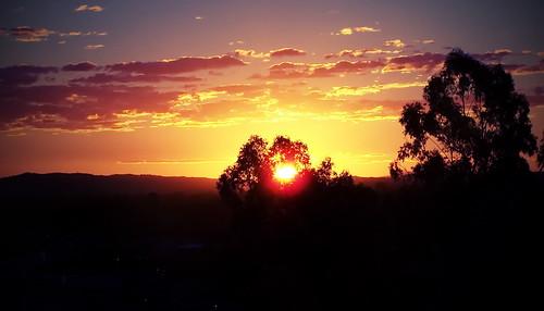city trees sun skyline clouds australia queensland 1001nights ipswich 1001 magiccity ipswichqueensland 1001nightsmagiccity nightsmagic