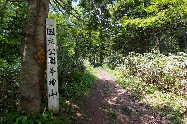 20150614-北海道羊蹄山(2日目)-0176.jpg