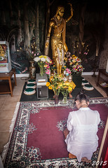 ~ Honoring Buddha ~