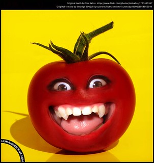 2015 04 19 vampire tomato