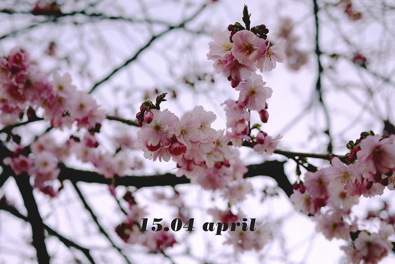 15.04 april