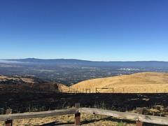 Good Morning from San Jose