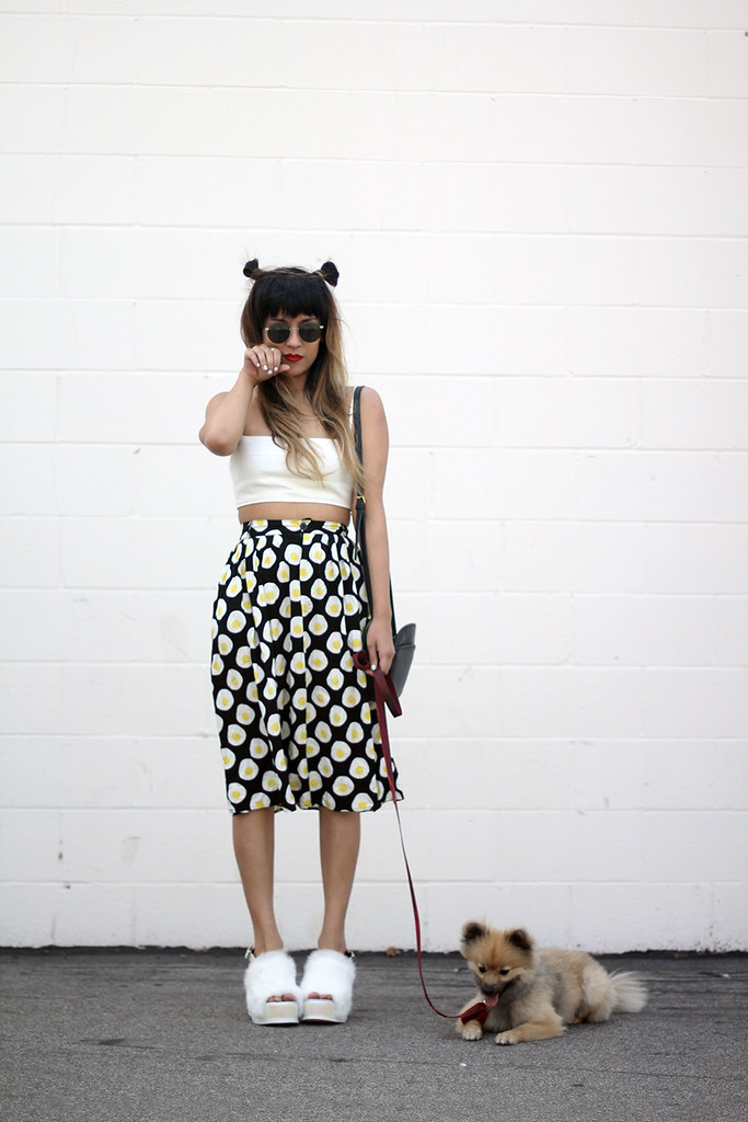 YES The Topaz Solestruck shoes, The WhitePepper Egg print midi skirt, Zara crop top, Pomeranian