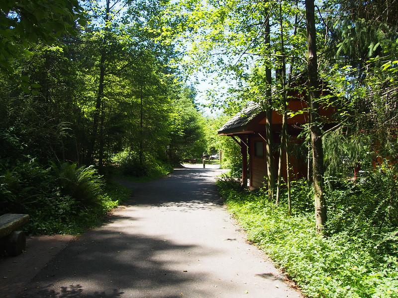 Cedar Falls Trailhead: OLYMPUS DIGITAL CAMERA