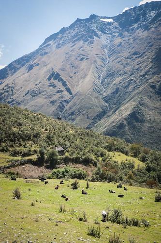 peru salkantaytrek hiking mountains trail