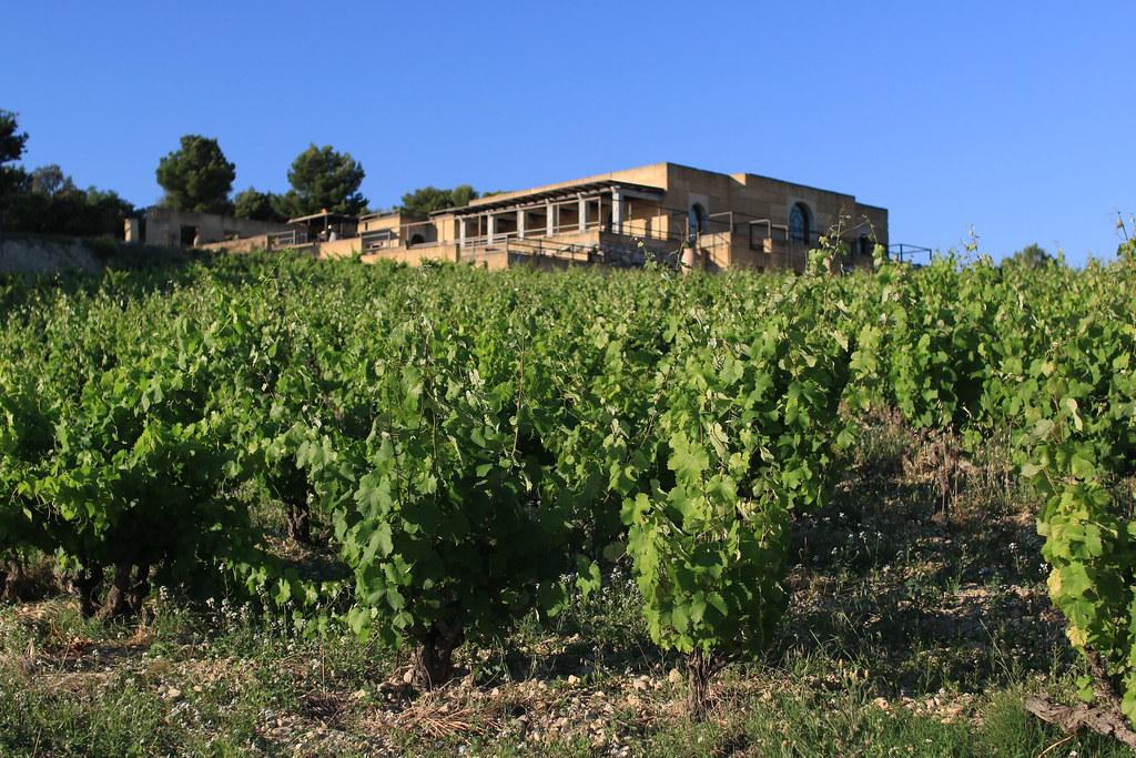 Viret Wine domaine
