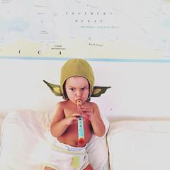 Apanhei um pokémon na sala a tocar flauta :green_heart: