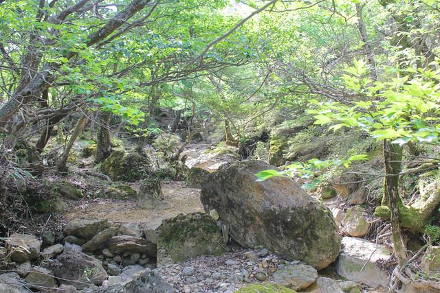 20140601-韓国岳-0067.jpg