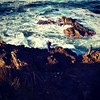 Rock fishing. #24hoursinTuross #bookgroup but we weren't fishing :) Tuross Heads.