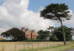 Newton Garth Paull Farm Tree