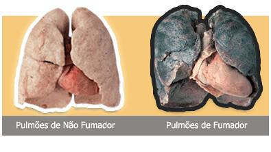 Desenvolvimento de inclinação de fumo