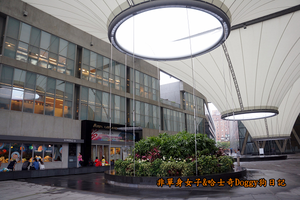 高雄大東文化藝術中心21