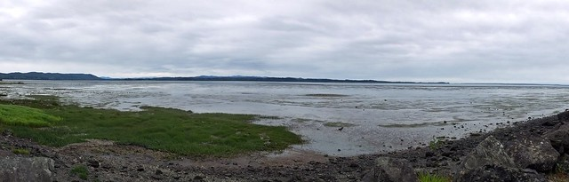 Willapa Bay panorama