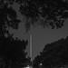 Small photo of Allandale night