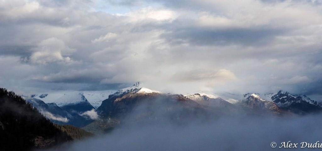 Jour de brouillard!!! 16780355494_817c8a3e16_b
