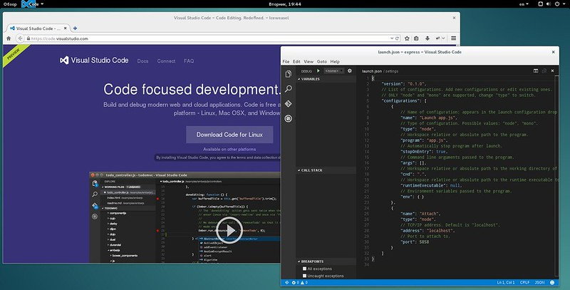 Visual Studio for Linux