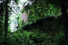 Lindenfels (07)