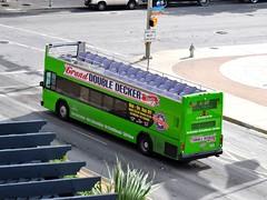 101 Grand Double Decker Tours