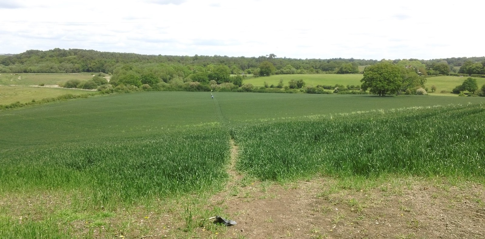 Into Amberley Wild Brooks West Sussex