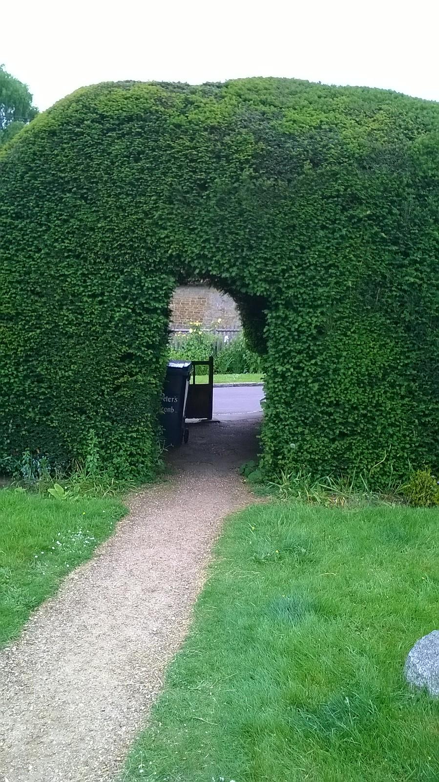 Churchyard hedge Hascombe, Surrey