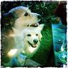 Sally & Nevio