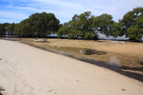 Beach at Curlew Avenue, South Pindimar near Tea Gardens, NSW, 17.4.2015