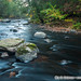 Salmon River Wildlands