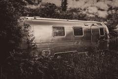 Abandoned Trailer III